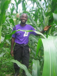 Maize Growing for Sustainability